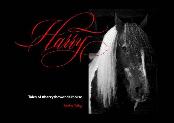 tales of harry the wonderhorse by rachel yallop